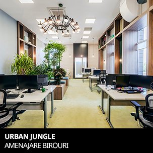 urban jungle - lion